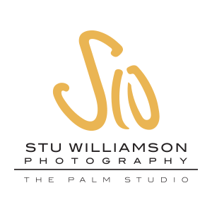 Stu Williamson